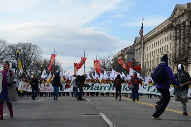 March For Life 2015 (3)